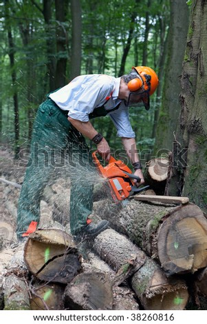 lumberjack is working with protective clothing in the forest - stock photo