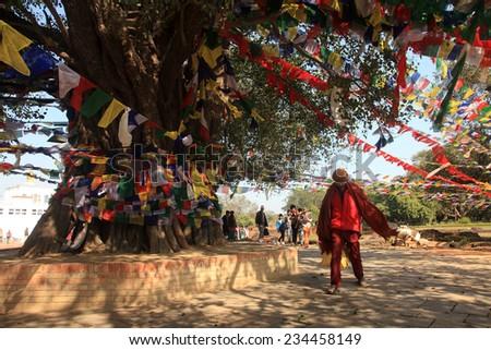 LUMBINI, NEPAL - FEB 08: An unidentified  Buddhist do prayers around the big banyan tree at Mayadevi temple on February 08, 2014 in Lumbini, Nepal. Mayadevi temple is the birth place of Lord Buddha. - stock photo