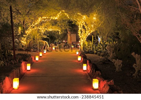 Luminarias and tree lights decorate a Southwestern garden for Christmas in this night scene. - stock photo