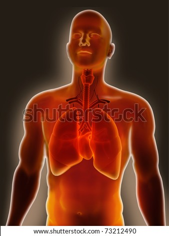 Lung Pain - stock photo