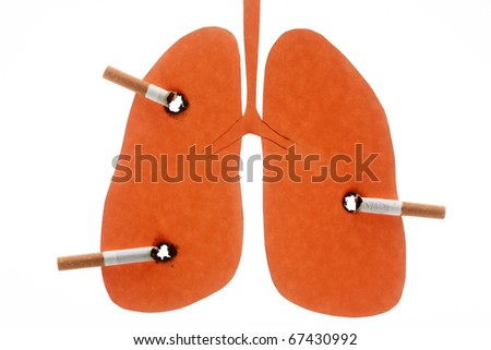Lungs damaged by cigarettes is isolated on white background - stock photo