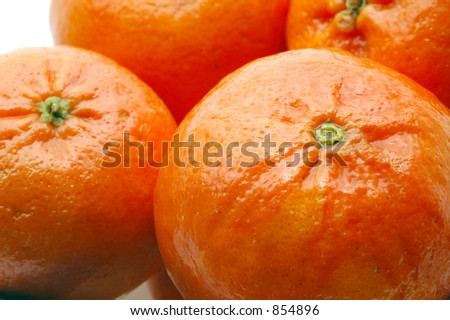 luscious tangerines macro focus on stem photographed with micro nikkor 2.8 lens - stock photo