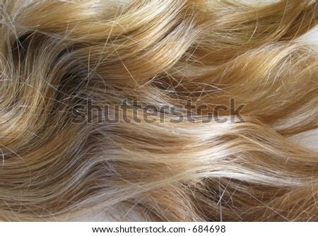 Lush Blonde Hair - stock photo