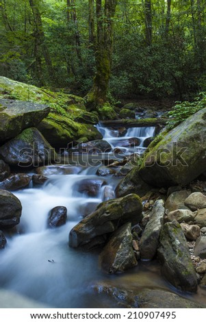 lush forest and cascading waterfall in South Carolina - stock photo