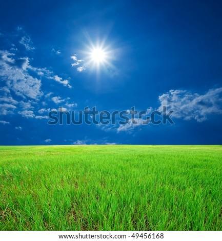 lush grass under a sparkle sun - stock photo