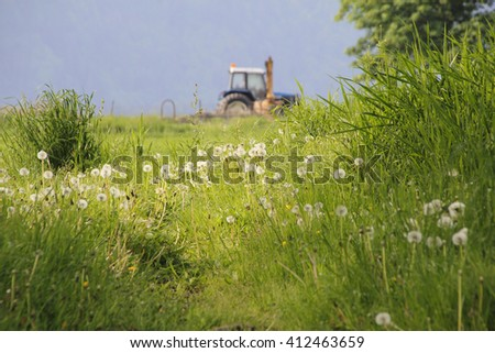 Lush, green and thick, an uncut meadow frames farmland/Meadow and Farmland/An uncut meadow frames farmland.  - stock photo
