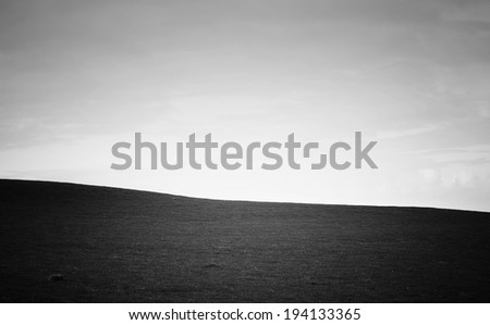 Lush green field, blue sky in black and white - stock photo