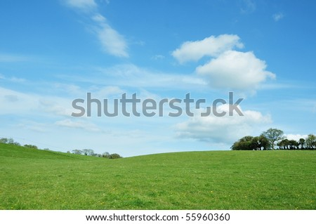 Lush Green Field under a Vivid Blue Sky - stock photo