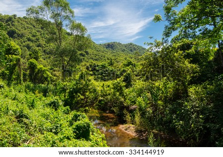 Lush green jungle surrounding the My Son UNESCO World Heritage site near Hoi An in central Vietnam, an ancient Hindu temple complex of the Cham people. - stock photo