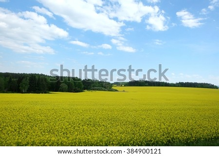 Lush green scenery in Czechoslovakia