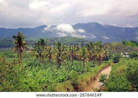 Lush green scenery with banana trees, palm trees and mountains in southern Taiwan