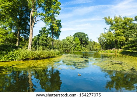 Lush Green Woodland Park Reflecting in Tranquil Pond in Sunshine - stock photo