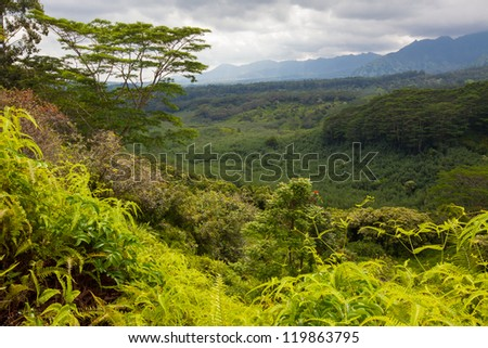 Lush, pristine, emerald green, tropical forest in mountainous region of a volcanic Pacific Island. Dark clouds indicate an incoming storm. - stock photo
