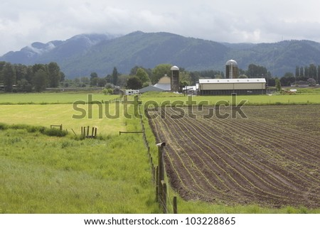 Lush spring farmland where crops are beginning to break ground/Lush Farmland/Lush farmland abounds in British Columbia's Fraser Valley - stock photo