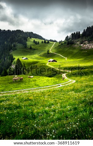Lush swiss mountain meadow with a hiking path, cows and a farm house - stock photo