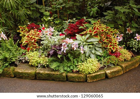 Lush tropical garden with assorted colorful plants and flowers - stock photo