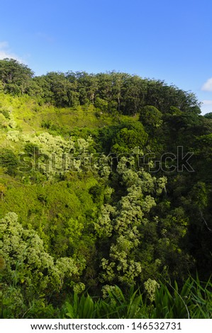 Lush tropical rain-forest valley on The Road to Hana, Maui, Hawaii, USA - stock photo