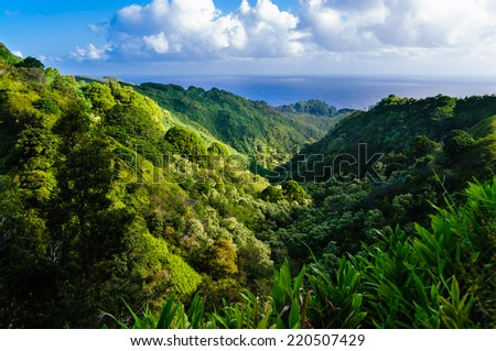 Lush tropical rainforest valley on The Road to Hana, Maui, Hawaii, USA - stock photo