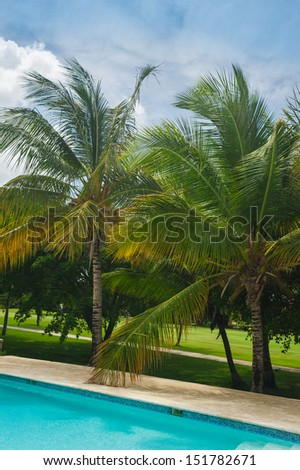 Luxurious Beautiful villa with an own swimming pool in Dominican Republic.. Outdoor resort Swimming pool in Tropical Paradise. spa resort. Dominican Republic, Seychelles, Caribbean, Bahamas.