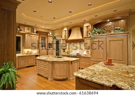 Luxurious kitchen in new home
