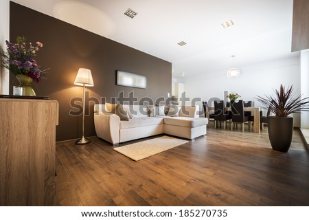 Luxurious living room with kitchen area - stock photo
