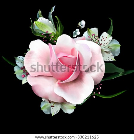 luxurious soft pink rose close up, flowers alstromeria in the background isolated on black background, watercolor illustration - stock photo