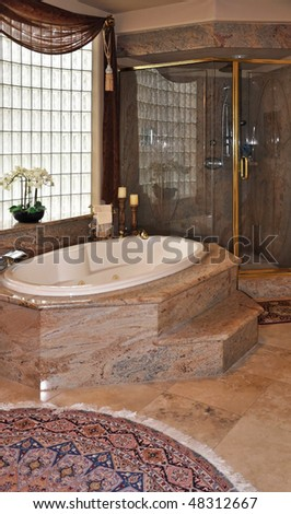 luxury bath and shower