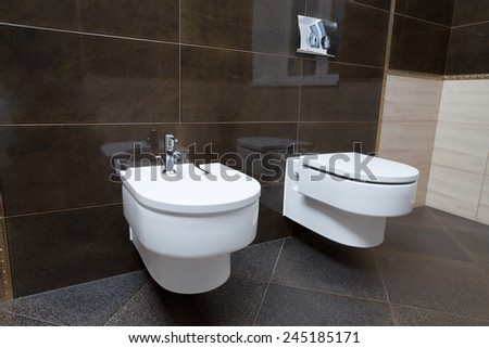 Luxury bathroom closeup - the water-closet and bidet. - stock photo