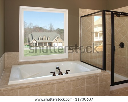Luxury Bathroom Tub and Window