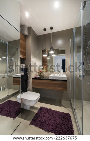 Luxury bathroom with shower in european style - stock photo