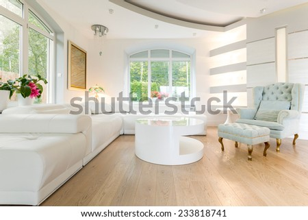 Luxury bright spacious living room  - stock photo