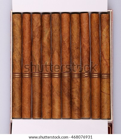 luxury cigarillos in box isolated on white