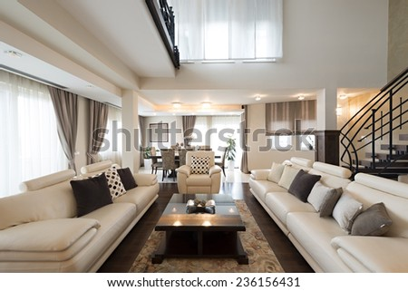 Luxury furnished living room interior - stock photo