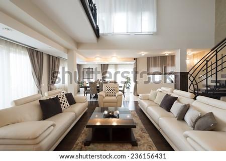 Luxury furnished living room interior - stock photo
