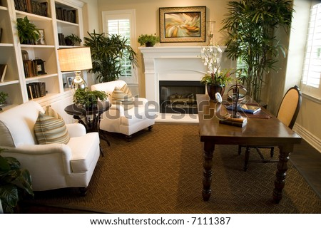 Luxury home office with a fireplace. - stock photo