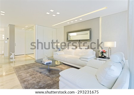 Luxury Modern Living Room With White Leather Furniture - stock photo