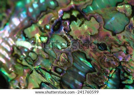 luxury pearl texture - stock photo