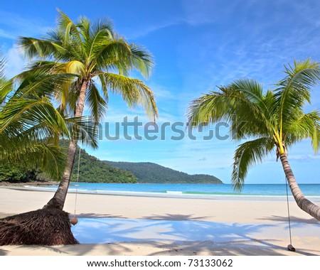 Luxury resort beach with beautiful palm trees on white sand - stock photo