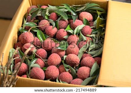lychee in box - stock photo
