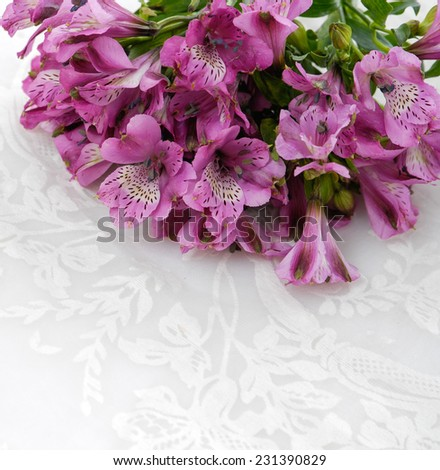 Lying down branch pink orchid and lace texture - stock photo