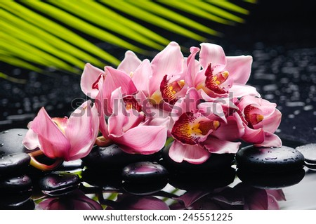 Lying down branch pink with leaf and stones on wet background - stock photo