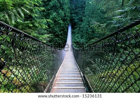 Lynn Canyon Suspension Bridge, North Vancouver, Canada - stock photo