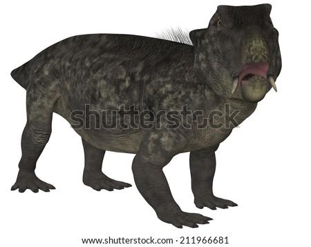 Lystrosaurus- 3D Dinosaur - stock photo