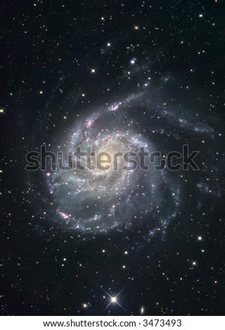 M101 Pinwheel galaxy - stock photo