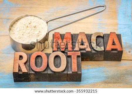 maca root powder on a metal measuring scoop against painted wood and words in vintage letterpress wood type - stock photo