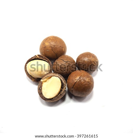 Macadamia nut on white background