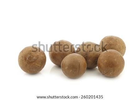 Macadamia nuts (Macadamia tetraphylla) on a white background - stock photo