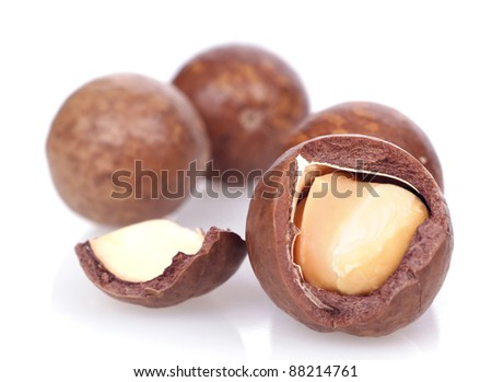 macadamia nuts on white background - stock photo
