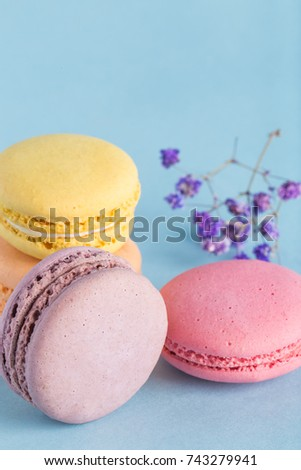 Macarons snacks