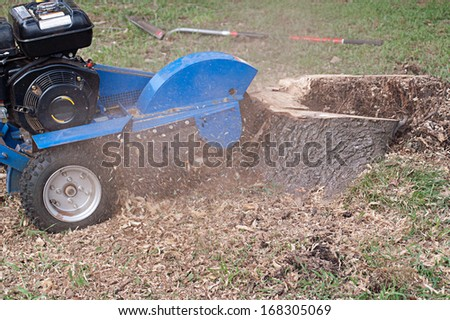 Machine grinding stump left after tree removal - stock photo